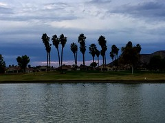 Lightening (logan zarobinski) Tags: takenwithsmartphone golfcourse ducks lake houses cloudy hills silhouette lightening trees palmtrees water