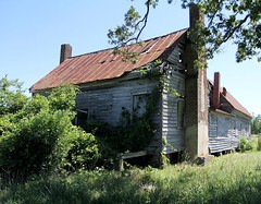 A mouse house, early 1800s (ariel is . . .) Tags: northcarolina nc abandoned empty early19thcentury 1800s federal 112stories overgrown brickchimneys tinroof