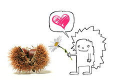 a thorny romance (brescia, italy) (bloodybee) Tags: 365project chestnut bur fruit food thorn hedgehog animal draw flower love heart comic bubble humor fun brown pink white