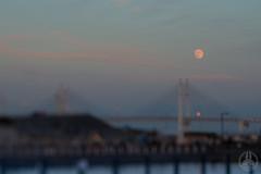 SuperMoon & the bridge. (taga928s4(Akira.T_JPN)) Tags: yokohama baybridge    supermoon japan  moon   bridge