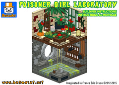 POISONER-GIRL-SAMPLE (baronsat) Tags: lego batman custom instructions model moc dc gotham
