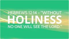 Hebrews 12:14 (joshtinpowers) Tags: hebrews bible scripture