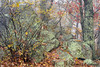 Autumn Mist Blue Ridge Parkway (travelphotographer2003) Tags: autumn fallcolor fog mist blueridgemountains blueridgeparkwaynationalpark virginia usa appalachianmountains discovery exploration freedom fall mountains photography outdoors landscape appalachia ridges scenic fallfoliage blueridgeparkway appalachians nps parkway landscapephotography nationalpark
