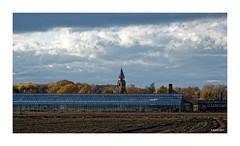 TWISTEDEN - St. Quirinus (Babaou) Tags: deutschland germany kevelaer nrw twisteden quirinus kirchturm kerktoren kirche kerk gewächshaus wolken sturm dxo agriculture gartenbau landwirtschaft dorf