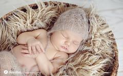 Torun-Swietliste-fotografia-noworodkowa-dzieci-noworodkowe-Torun