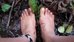 20161107_082354 (bfe2012) Tags: barefoot barefeet barefooting barefooted barefooter barefoothiking baresoles barefoothiker barfuss feet freedom forest lifestyle barefootlifestyle muddyfeet toes toughsoles soles dirtyfeet dirtysoles hiking swamp shoes stain myshoes woodland nature blacksoles