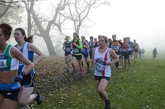DSC_3448 (Dave Pinnington Photography) Tags: european womens xc trials sefton park liverpool 261116 photos by dave pinnington