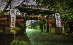 Ghostly encounter in Ueno park (PeterThoeny) Tags: ueno uenopark tokyo japan garden park temple gate traditionaljapan traditional light hdr 1xp raw nex6 selp1650 photomatix night quality hdrquality photographylights shadows