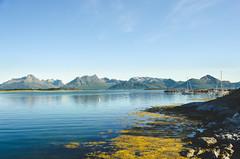 Steinlandsosen (Jaime Prez) Tags: noruega barcas water mountains fiordo boats rocks fjord ocean ocano fiord norge montaas algas rocas agua norway noreg alger seaweed
