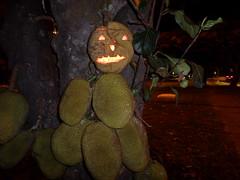 Jaca - jackfruit - SAM_4940 (rodrigov) Tags: jaca jackfruit halloween saci