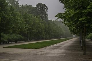 Parc de Bruxelles in summer