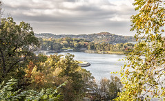 The Fabulous Lake of the Ozarks (SteveFrazierPhotography.com) Tags: lakeoftheozarks lakeozark camdencounty view scene scenery landscape lake evening water autumn fall color foliage trees leaves sky horizon island waves road roadway october2016 clouds reflection vacation parkway pkwy hh villageofthefourseasons outdoor shore shoreline stevefrazierphotography resort horseshoebend hazy rocks roads hills boats motorboat speedboat wake bagneldam missouri mo cloudy overcast condos resorts docks fishing fisherman recreation watersports