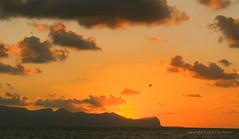 Sep 22: Sea Sunset Sky, Terrasini (johan.pipet) Tags: flickr sea sunset sun sky more mediterranee sicily italy terrasini red yellow landscape seascape holiday palo bartos barto canon eu europe