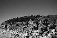 IMG_4408 (goaniwhere) Tags: ephesusturkey ancient city history historicalsite ancientcity ancientruins ephesus travel outdoors