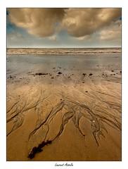 Traces (Laurent Asselin) Tags: traces sable eau mer ocan rivage plage nuages ciel perspective paysage guyane kourou