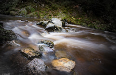 Stream in Aberfoyle, Scotland (mmcclair) Tags: river aberfoyle scotland