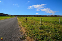Caneadea Country Road (DTD_0693) (masinka) Tags: caneadea newyork unitedstates ny meadow fence country road countryside rural landscape photography paved ontheroad etbtsy green blue sky grass horizon distance vanishingpoint converginglines