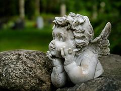 Pensive angel (Jonne Naarala) Tags: angel cemetery digilux2 finland leica leicadigilux2