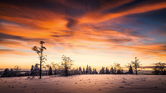When the sun goes down (-SebsTian-) Tags: sun sunset mountain trees snow reflection sky clouds himmel wolken sonne schnee tamron 1750 sony a58