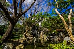 DSC01382 (Damir Govorcin Photography) Tags: water nature landscape sony a7ii zeiss 1635mm chinese gardens sydney sky waterfall rocks nsw australia flowers