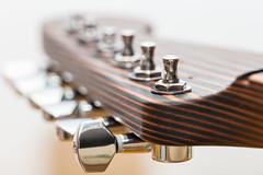 Zebrano head (Role Bigler) Tags: canoneos5dsr egitarre ef28100mmlmacroisusm gitarre guitar musicalinstrument musikinstrument stimmmechaniken closeup tuner tuningpegs zebrano zebranowood bokeh bokehlicious