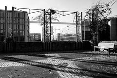 The length of shadows (John fae Fife) Tags: fujifilmx noiretblanc xe2 luxembourg monochrome bench blackandwhite bw urban city