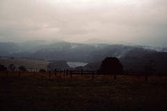 First rainy day after 5 month in Victoria in 1991 (Stefan Fisher) Tags: victoria minoltaxd7 kodakektachrome oz scanned 35mm downunder outdoor rainyday australia
