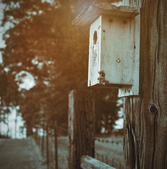 Bird's Eye View - HFF (TuthFaree) Tags: elements fence post barbwire quadtone rural farm ga georgia swga hff fencefriday birdhouse railroadtie dof