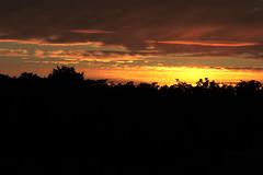 Abendstimmung (Rdiger Stehn) Tags: germany deutschland eos europa herbst natur himmel wolken landschaft schleswigholstein gegenlicht abendstimmung norddeutschland mitteleuropa altenholzstift altenholz canoneos550d