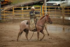 CalgaryPoliceRodeo2015-BullRiding-505 (calgarypolicerodeophotos) Tags: horse calgary race bareback sheep barrel police bull racing poker rodeo calf bullriding chute mutton saddle bronc steerwrestling barrelracing saddlebronc cpra chutedogging