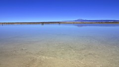 Laguna Cejar (a l o b o s) Tags: chile water de landscape outdoors agua san desert paisaje lagoon pedro atacama desierto laguna calama cejar