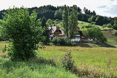 Haslach_2015-177.jpg (haob51) Tags: schwarzwald haslach kinzigtal