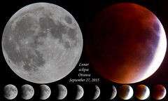 Lunar eclipse (navanbird) Tags: moon eclipse blood ottawa lunar navan tomdevecseriphotography