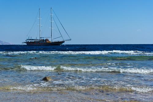 Sharm-155