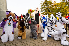 MCM-LDN-2015-7090 (Mikepaws) Tags: uk greatbritain autumn england london film television costume furry october comic cosplay unitedkingdom manga culture games entertainment fantasy convention movies sciencefiction popculture fancydress con excel mcm fursuit 2015 fursuits internetculture