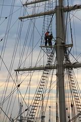 Cuestión de cuerdas (salvador cuenca navas) Tags: puerto cuerda barco marino nautico marinero atraque hamburgo10913b