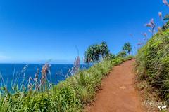 IMG_7756 (AlexDurok) Tags: ocean volcano islands waikiki snorkeling trail poke kauai waimea hanaleipier honolulu bigisland hilo maunakea hawai princeville keebeach ohau kailuakona napalicoast alamoanabeachpark lawai blacksandbeach diamondheadcrater dolphindiscovery kalalautrail waimeacanyonstatepark wailuariverstatepark beachhouserestaurant keauhoubay portallenairport poipubeachpark southpointpark waipiovalleylookout spoutinghornpark captainjamescookmonument papakoleagreensandbeach hawaiʻivolcanoesnationalpark kealakekuabaystatehistoricalpark kaimubeachpark pu'uokilalookout awaawapunitrail hanaleibaybeachpark