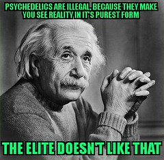 Illegal psychedelics meme (dylan.unknown5150) Tags: world new eye its make that see truth order power you doesnt albert einstein like lsd meme intelligence elite drugs illegal knowledge third reality government law they form information psychedelia cannabis because shrooms illuminati tripping mescaline dmt psychedelics legality purest