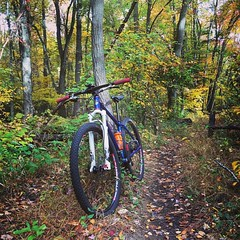 Re-gram from @outdoorslawyer full #fallcolors in effect!  #weavercycleworks #custombicycles #steelisreal