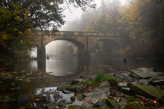 Downstream (Lindi m) Tags: bridge autumn fishing northumberland mistymorning rivercoquet brainshaughbridge