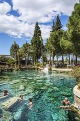 Pamukkale's Antique Pool, Turkey (Nejdet Duzen) Tags: trip travel nature pool turkey spring roman antique trkiye historical pamukkale denizli turkei seyahat tarihi doa kaplca romallar antikhavuz