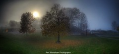Charles Daley Park (Rex Montalban Photography) Tags: sunset fog charlesdaleypark rexmontalbanphotography