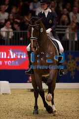 HB110493 (RPG PHOTOGRAPHY) Tags: world london cup olympia dressage 2015 tiamo jorinde verwimp