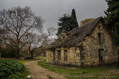 Tatoi, Parnitha, Greece 2 (nikhrist) Tags: house abandoned forest ruins greece parnitha attiki tatoi