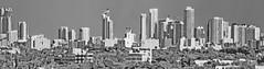 Midtown skyline of Miami, Florida, USA / The Magic City (Jorge Marco Molina) Tags: miami florida usa cityscape city urban downtown density skyline skyscraper building highrise architecture centralbusinessdistrict miamidadecounty southflorida biscaynebay cosmopolitan metropolis metropolitan metro commercialproperty sunshinestate realestate tallbuilding midtownmiami
