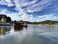 #RhineRiver #ferry #Sinzig to #Linz (RenateEurope) Tags: rhineriver ferry sinzig linz ahrweiler ahr ahrtal river ahrvalley germany landscape green rocks trees weatherphotography ipadair2 iphoneography autumn 2016 renateeurope