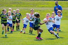 Rugby 2016 2 (spamdog0) Tags: alexandria jackkise kidssports rugby