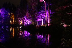 2016 - 14.10.16 Enchanted Forest - Pitlochry (219) (marie137) Tags: enchanted forest pitlochry mobrie137 scotland lights music people water reflection trees shows food fire drink pit patter shapes art abstract night sky tour family walk path bells smoke disco balls unusual whisperer bridge wood colour fun sculpture day amazing spectacular must see landscape faskally shimmer town