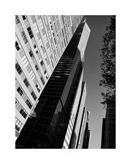 I LOVE NEW YORK LXIII (2 Marvelous 4 Words) Tags: nyc ny newyorkcity newyork bw blackwhite light shadows architecture arquitectura sixthavenue 6thavenue skyscraper metlifetower bankofamericatower