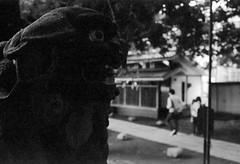 (distraction) (Dinasty_Oomae) Tags: minolta  minoltina  minoltinas s   tokyo   monochrome outdoor street bw blackwhite blackandwhite   arakawaku nishinippori  suwajinja  komainu